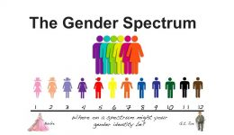 The Gender Spectrum Emily
