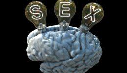 Brain-Sex-01