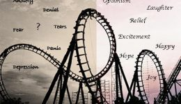 Riding-the-Emotional-Rollercoaster