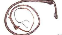 SnakeWhip-01