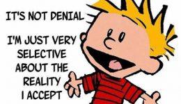 Calvin-and-denial